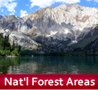 Hikes & Adventures in National Forest Lands